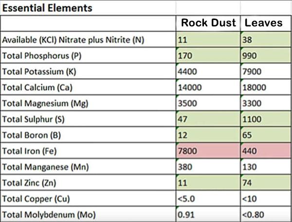 rock dust vs dead leaves