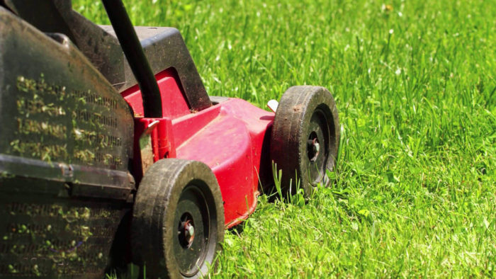 How do you choose the best lawn mower