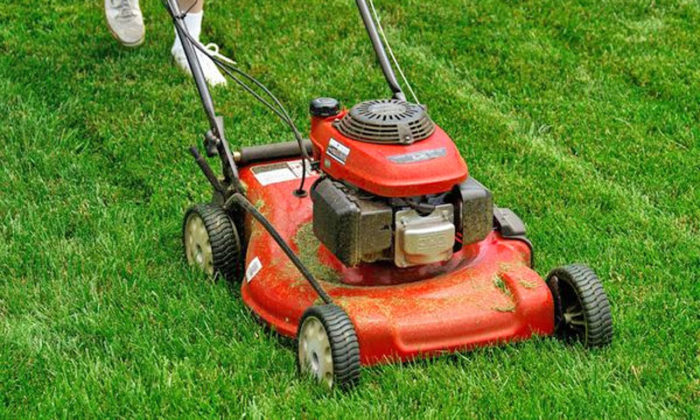 Gasoline lawnmower